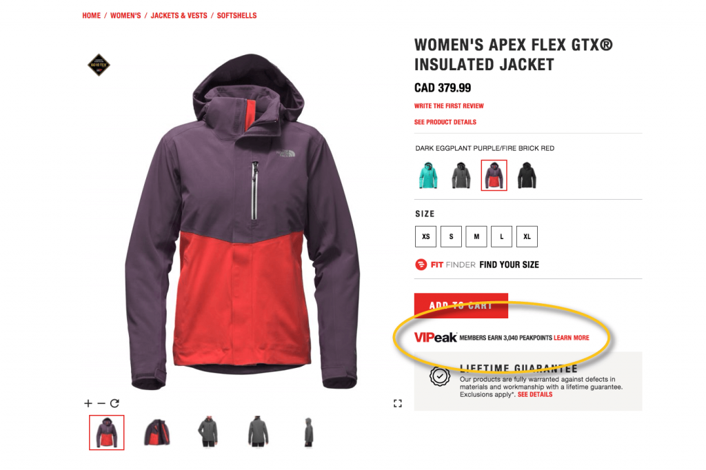 the north face 1.png